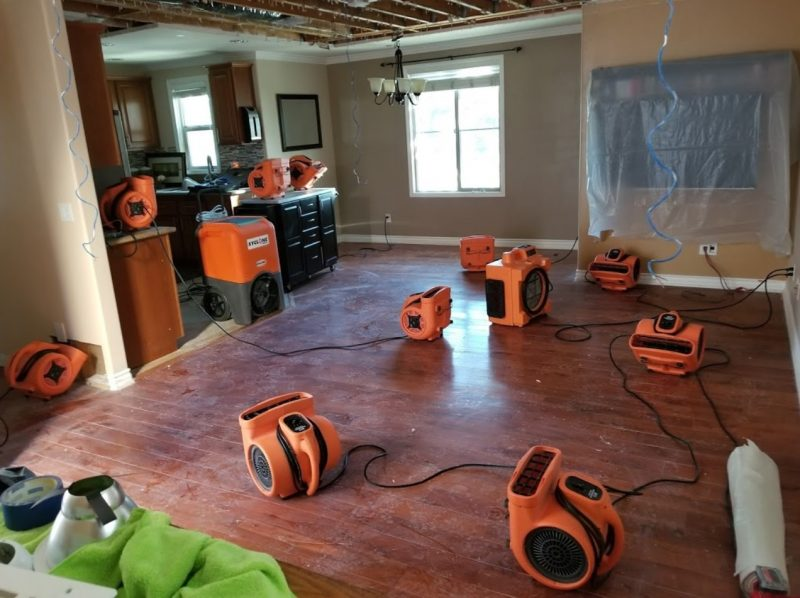 mold removal fans in home