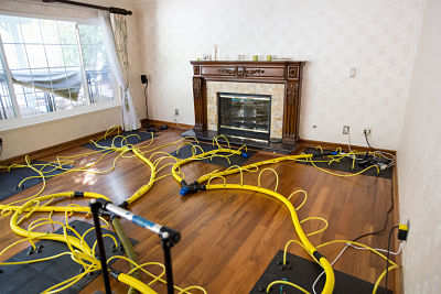 mold and water damage removal equipment