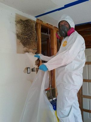 mold removal techinician in safety suit