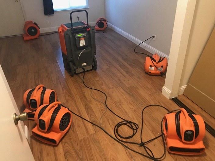 Water damage and mold removal in a home